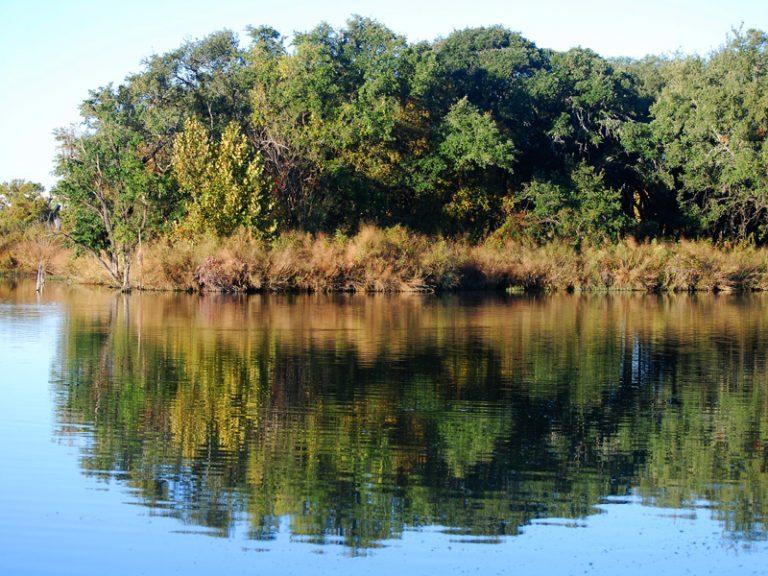 Brushy Creek Park - Austin, TX